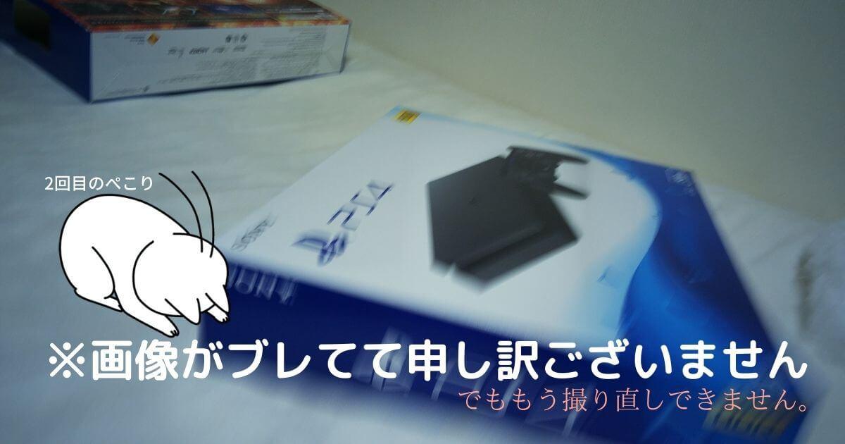 PS4の箱に入れたところ
